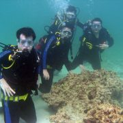 Kish diving Iran PADI persian gulf scuba