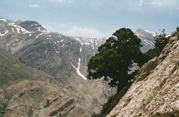West of Dena (Kale-Ghodvays via sitar) 4280meters.
