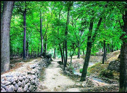 Dashtak Village, Shiraz, Fars, Iran