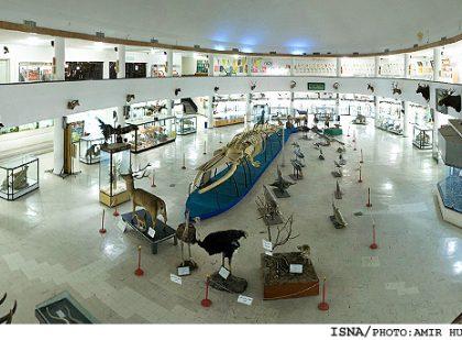 Natural History Museum (موزه تاریخی طبیعی و تکنولوژی دانشگاه شیراز ), Fars, Shiraz, Iran
